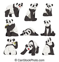 Cute Funny Panda Bear, Adorable Wild Animals in Various Poses Cartoon Style Vector Illustration on White Background