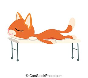 Cute Funny Red Cat Relaxing on Massage Table Vector illustration
