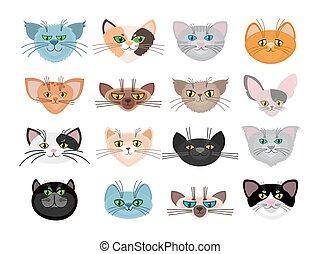 cute, gato, vetorial, ilustração, caras