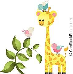 cute, girafa, três, pássaros