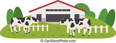 cute, gramado, vaca, fazenda, contra, fundo, caricatura, esperto, feliz