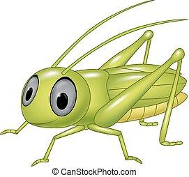 Cute grasshopper posing isolated - Vector illustration of...