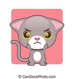 Cute gray kitten being upset