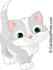 Cute gray kitten  - Illustration of very Cute gray kitten