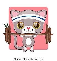 Cute gray kitten lifting heavy