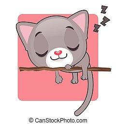 Cute gray kitten sleeping