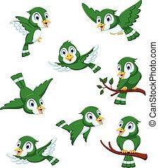 Cute green bird cartoon set