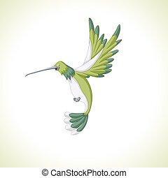cartoon hummingbird flyi