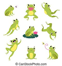 Cute Green Frog Jumping, Sitting on Leaf and Catching Fly Vector Set