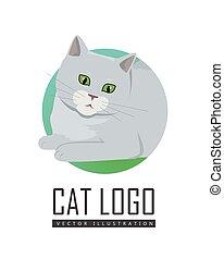 Cute Grey Cat