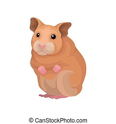 Cute hamster small rodent animal vector Illustration on a white background
