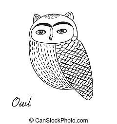 Cute hand drawn owl bird illustration