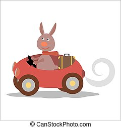 cute hare with scarf on car