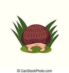 Cute hedgehog looking for something in the grass, back view, funny animal cartoon character vector Illustration on a white background