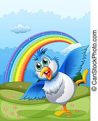cute, hilltop, céu, pássaro, arco íris