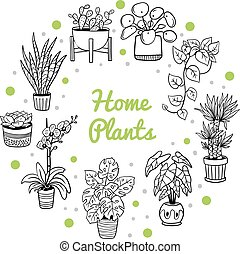 Cute houseplants in a circle shape. Doodle monochrome plants in pots. Vector illustration. Natural design elements can be used for postcards, banners, websites or ads.