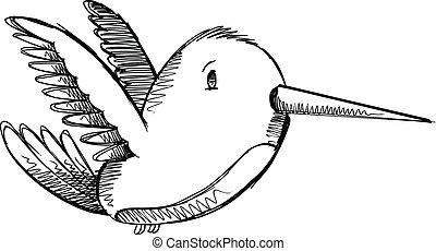 Cute Hummingbird Sketch Drawing Ve - Cute Hummingbird Sketch...