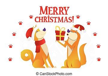 cute, illustration., feliz, presente, apartamento, cartão postal, cão, personagem, dois, amarela, caricatura, experiência., vetorial, modelo, branca, cachorros, vermelho, natal
