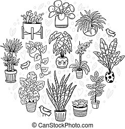 Cute indoor and outdoor plants. Doodle monochrome flowers, cactus, and succulents in pots with funny birds. Vector illustration. Natural design elements can be used for postcards, banners, websites or ads.