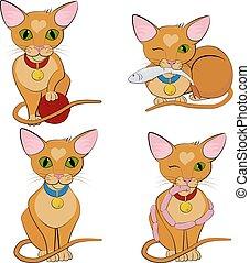cute, jogo, character., gengibre, cats., caricatura