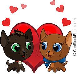 Cute kitten and kitten in love