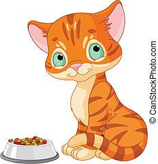 Cute Kitten  - Cute striped kitten near the cat's food bowl