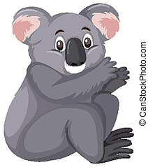 Cute koala on white background