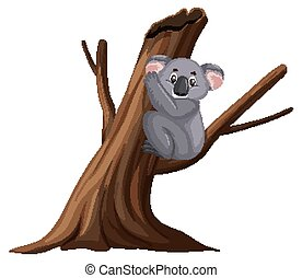 Cute koala sitting on the branch on white background