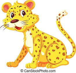 Cute leopard on white background