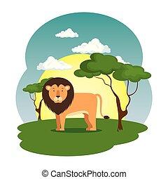 cute lion in the field scene
