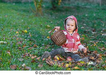 Cute little baby boy is holding wicker basket sitting in autumn garden.