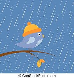 cute little bird sitting on a branch at autumn rain