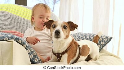 Cute little boy and funny dogs at home