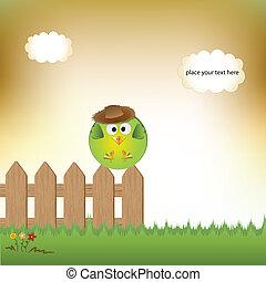cute little boy bird