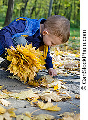 Cute little boy collecting autumn leaves
