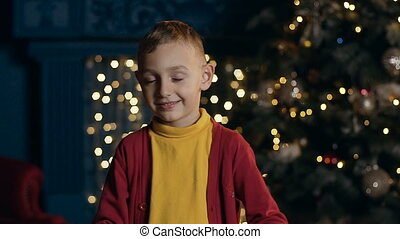 Cute little boy looking stright to tne camera and smiling on the christmas tree background.
