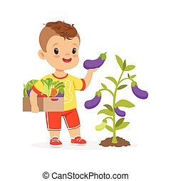 Cute little boy picking eggplants in the garden, kids healthy food concept colorful vector Illustration