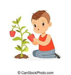 Cute little boy picking pepper, kid playing in the garden concept colorful vector Illustration