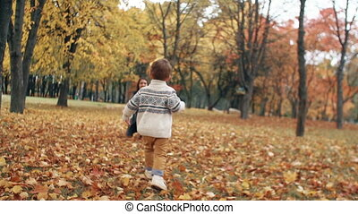 cute little boy running through the amazing autumn alley in the park came into the arms of his beautiful mother slow mo