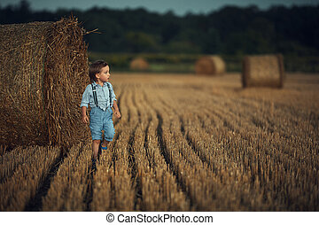 Cute little boy walking among the sheafs - countryside shot