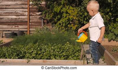 Cute Little Boy Waters Greenery From a Garden Watering Can. Little Gardener Concept