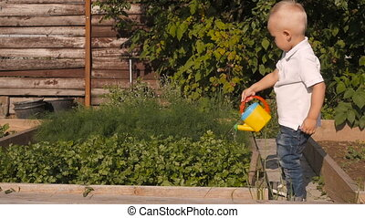 Cute Little Boy Waters Greenery From a Garden Watering Can. Little Gardener Concept