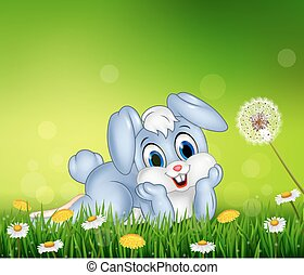 Cute little bunny on grass