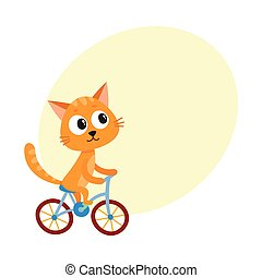 Cute little cat, kitten character riding bicycle, cycling,...