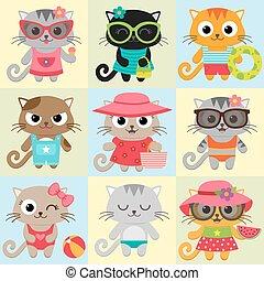 Cute little cats