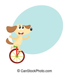 Cute little dog, puppy character riding bicycle, unicycle,...
