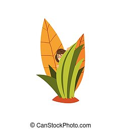 Cute little fairy creature hiding in the tall grass vector Illustration on a white background