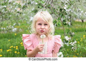 Cute Little Girl In Flowering Apple Orchard Blowing Dandelion Seeds Outside