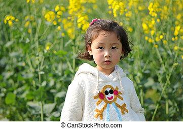 Cute little girl in rape flowers