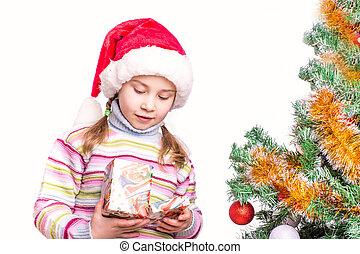 Cute little girl in Santa's hat